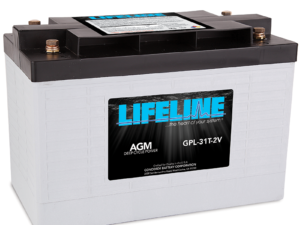 Lifeline GPL-31T-2V Marine RV Battery