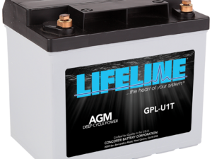 Lifeline GPL-U1 Marine RV Battery
